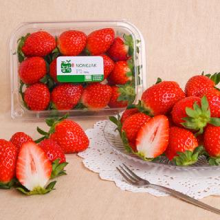 딸기, 500g/팩