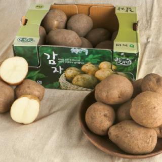 감자, 2kg/박스