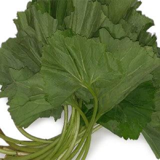 머위잎(골라담기), 100g(200g이상구매가능)